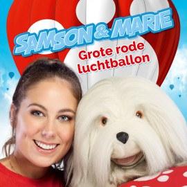 small-SMA0-2020-002049-MP3-Grote-rode-luchtballon.jpg