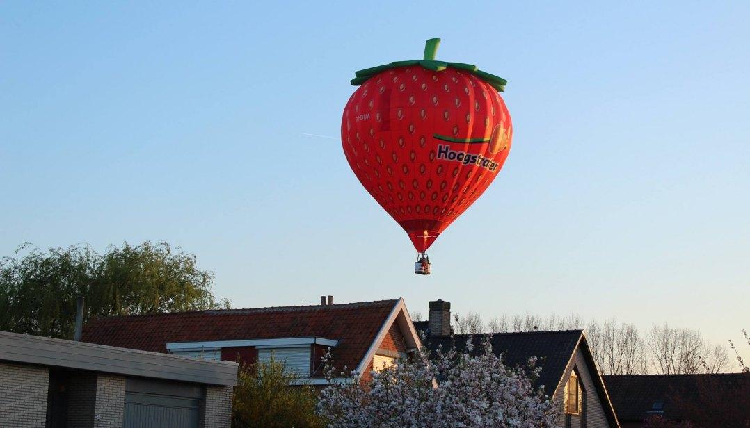 Win een ballonvaart met Hoogstraten aardbeien