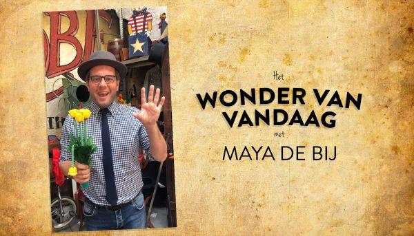 Het wonder van vandaag met Maya de bij